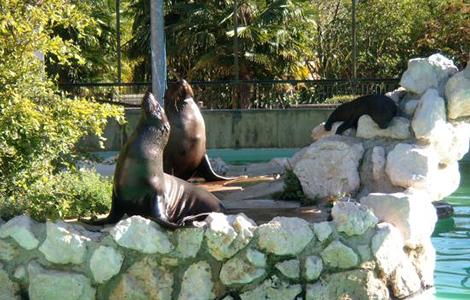 A day at Punta Verde Wildlife Park